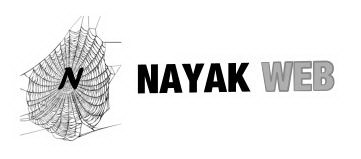 NAYAK WEB™ - One stop solution for all your web needs
